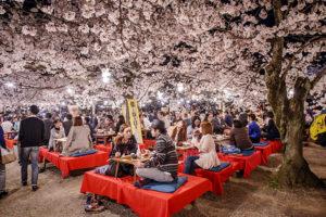 Lễ hội hoa anh Đào tháng 4