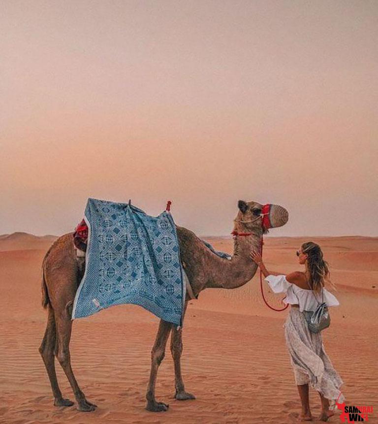 DU LỊCH TỰ TÚC VỚI CỤC WIFI ĐI UAE CÙNG SAMURAI
