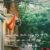 Hà Nội  thăm chùa Hà  mùa dịch cùng thiết bị Wifi Việt Nam